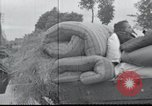 Image of Invasion of France France, 1940, second 3 stock footage video 65675073793