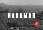 Image of Investigation of Hadamar Euthanasia Centre Germany, 1945, second 3 stock footage video 65675073816