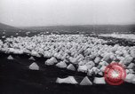 Image of Sveinn Bjornsson Reykjavik Iceland, 1944, second 8 stock footage video 65675073836