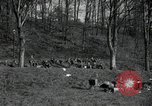 Image of German civilians on east bank of Mulde River Grimma Germany, 1945, second 7 stock footage video 65675073903