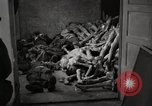 Image of pile of emaciated corpses Germany, 1945, second 8 stock footage video 65675073907