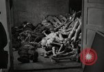 Image of pile of emaciated corpses Germany, 1945, second 12 stock footage video 65675073907