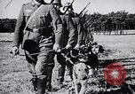 Image of Canines Germany, 1940, second 4 stock footage video 65675074056