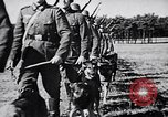 Image of Canines Germany, 1940, second 5 stock footage video 65675074056