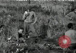 Image of wounded 3rd Division soldier Cisternia Italy, 1944, second 6 stock footage video 65675074263