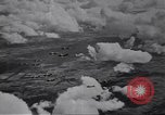 Image of  P-51D tail number 44-13325 Germany, 1945, second 3 stock footage video 65675074297