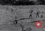 Image of Negro soldiers Bougainville Island Papua New Guinea, 1944, second 10 stock footage video 65675074318