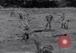 Image of Negro soldiers Bougainville Island Papua New Guinea, 1944, second 11 stock footage video 65675074318