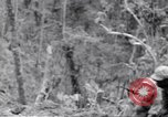 Image of Negro soldiers Bougainville Island Papua New Guinea, 1944, second 8 stock footage video 65675074325