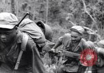 Image of Negro soldiers Bougainville Island Papua New Guinea, 1944, second 12 stock footage video 65675074325