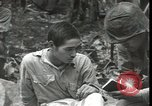 Image of Japanese-American Marines New Britain Papua New Guinea, 1944, second 8 stock footage video 65675074391