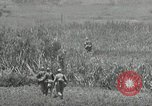Image of United States soldiers Okinawa Ryukyu Islands, 1945, second 12 stock footage video 65675074429