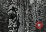 Image of Civilian Conservation Corps United States USA, 1935, second 3 stock footage video 65675074631
