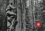 Image of Civilian Conservation Corps United States USA, 1935, second 5 stock footage video 65675074631