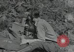 Image of Civilian Conservation Corps United States USA, 1935, second 8 stock footage video 65675074631