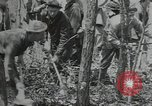 Image of Civilian Conservation Corps United States USA, 1935, second 1 stock footage video 65675074632