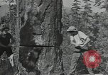 Image of Civilian Conservation Corps United States USA, 1935, second 5 stock footage video 65675074632