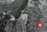 Image of Civilian Conservation Corps United States USA, 1935, second 8 stock footage video 65675074632