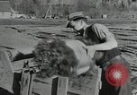 Image of Civilian Conservation Corps United States USA, 1935, second 10 stock footage video 65675074634