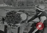 Image of Civilian Conservation Corps United States USA, 1935, second 11 stock footage video 65675074634