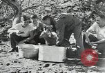 Image of Civilian Conservation Corps United States USA, 1935, second 3 stock footage video 65675074641