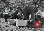 Image of Civilian Conservation Corps United States USA, 1935, second 5 stock footage video 65675074641