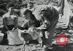 Image of Civilian Conservation Corps United States USA, 1935, second 8 stock footage video 65675074641
