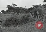 Image of Okinawan civilians Okinawa Ryukyu Islands, 1945, second 5 stock footage video 65675074702