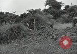 Image of Okinawan civilians Okinawa Ryukyu Islands, 1945, second 7 stock footage video 65675074702