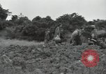 Image of Okinawan civilians Okinawa Ryukyu Islands, 1945, second 10 stock footage video 65675074702