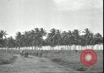 Image of U.S. Marines in Pacific Theater in World War II Guadalcanal Solomon Islands, 1942, second 8 stock footage video 65675074834