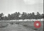 Image of U.S. Marines in Pacific Theater in World War II Guadalcanal Solomon Islands, 1942, second 10 stock footage video 65675074834