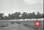 Image of U.S. Marines in Pacific Theater in World War II Guadalcanal Solomon Islands, 1942, second 11 stock footage video 65675074834