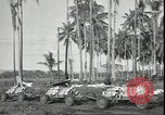 Image of Marines Guadalcanal Solomon Islands, 1942, second 4 stock footage video 65675074840
