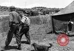 Image of General Frank W Milburn Korea, 1951, second 10 stock footage video 65675074929