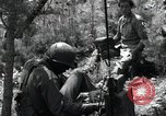 Image of 1st Battalion staff officers Korea, 1951, second 10 stock footage video 65675074931
