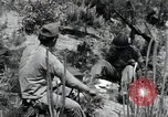 Image of 1st Battalion staff officers Korea, 1951, second 11 stock footage video 65675074931