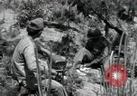Image of 1st Battalion staff officers Korea, 1951, second 12 stock footage video 65675074931