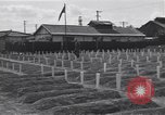 Image of American cemetery Korea, 1950, second 2 stock footage video 65675074964