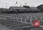 Image of American cemetery Korea, 1950, second 3 stock footage video 65675074964