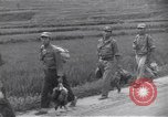 Image of 2nd Infantry soldiers Korea, 1950, second 10 stock footage video 65675074968