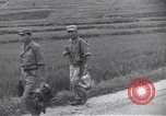 Image of 2nd Infantry soldiers Korea, 1950, second 12 stock footage video 65675074968