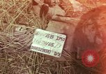 Image of United States soldiers Vietnam, 1965, second 1 stock footage video 65675075030