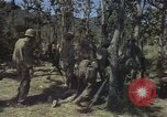 Image of United States soldiers Vietnam, 1965, second 9 stock footage video 65675075041