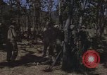 Image of United States soldiers Vietnam, 1965, second 10 stock footage video 65675075041