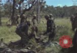 Image of United States soldiers Vietnam, 1965, second 10 stock footage video 65675075042