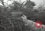 Image of United States soldiers Normandy France, 1944, second 3 stock footage video 65675075118