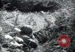 Image of United States troops Saint Lo France, 1944, second 10 stock footage video 65675075136