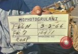 Image of United States diver Palomares Spain, 1966, second 2 stock footage video 65675075200