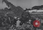 Image of German troops Italy, 1944, second 2 stock footage video 65675075255